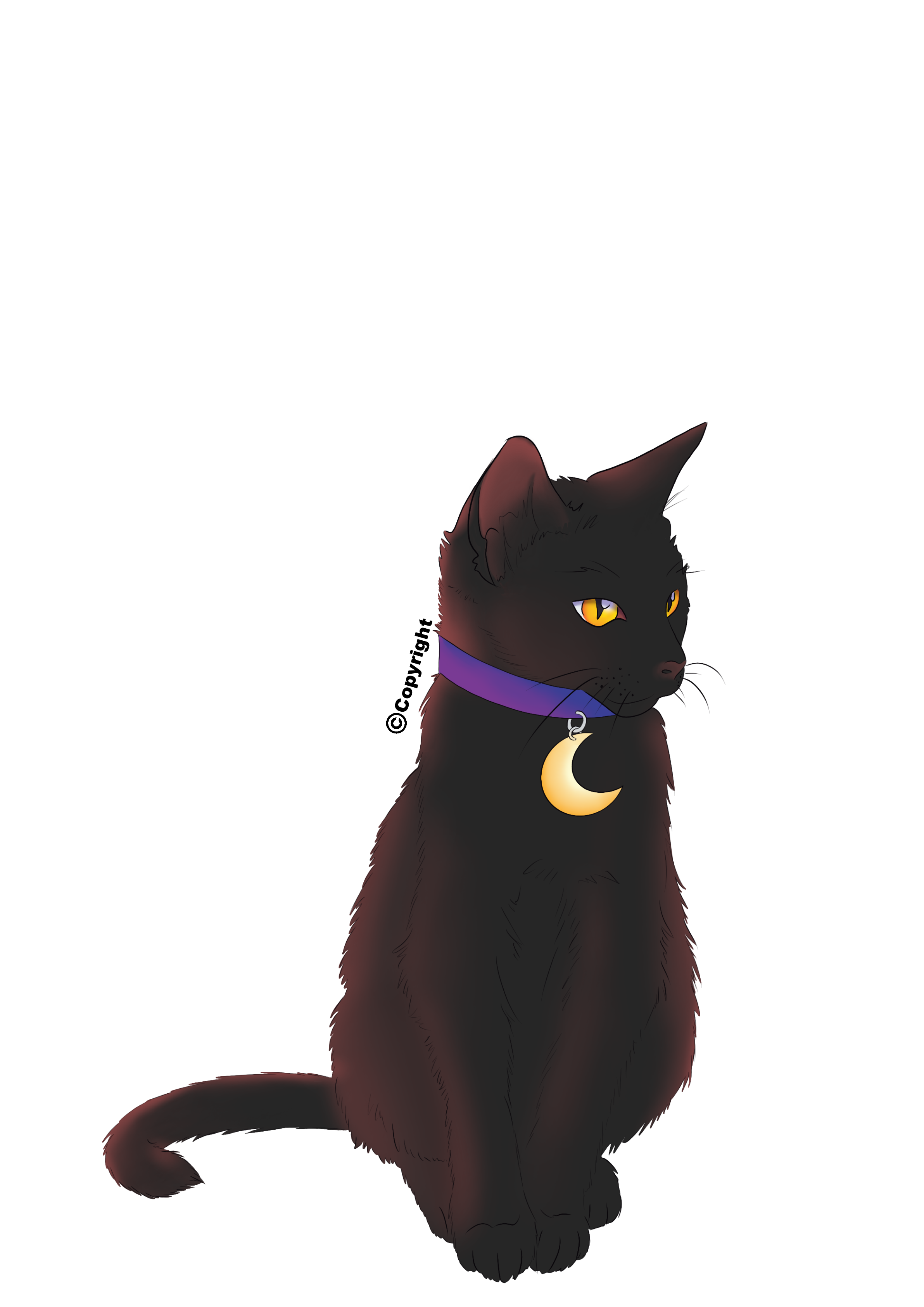 Halloween Black Cat with Moon Collar